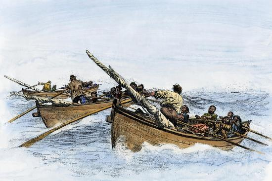 longboats-racing-to-harpoon-a-whale