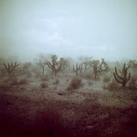 loomis-dean-summer-hail-and-thunderstorm-falling-on-desert