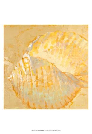 lorraine-vail-shoreline-shells-iv