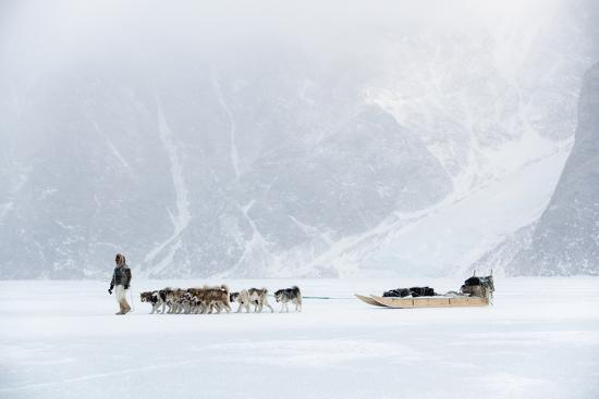 louise-murray-inuit-hunter-walking-his-dog-team-on-the-sea-ice-in-a-snow-storm-greenland-denmark-polar-regions
