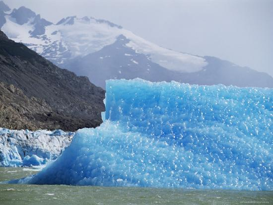 lousie-murray-glacial-icebergs-on-lago-argentina-patagonia-argentina-south-america