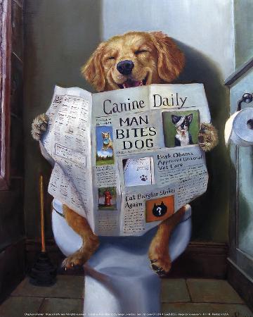 lucia-heffernan-dog-gone-funny