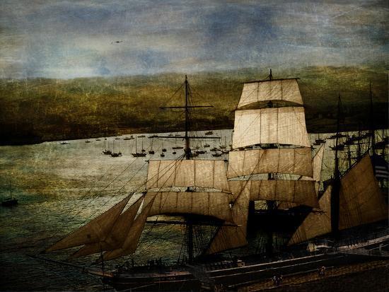 lydia-marano-safe-harbor