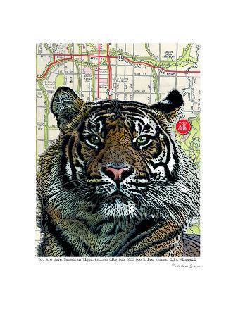 lyn-nance-sasser-and-stephen-sasser-kansas-city-tiger