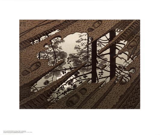 m-c-escher-puddle