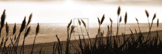 malcolm-sanders-setting-sun-iii