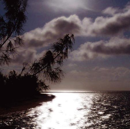 malcolm-sanders-silver-coast-i