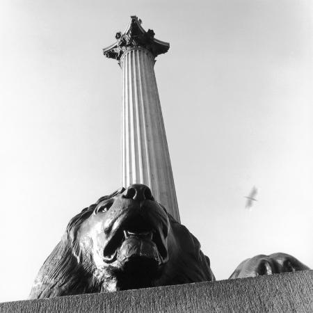 manuela-hoefer-nelson-s-column-with-lion-sculpture