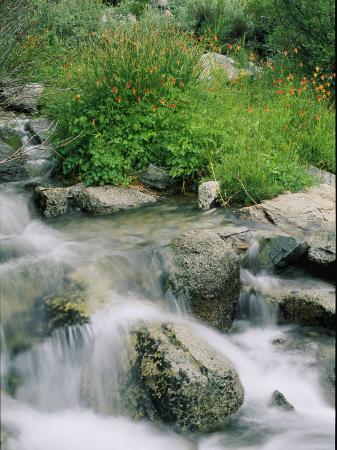 marc-moritsch-a-creek-flows-over-granite-rocks-in-the-sierra-nevada-mountains