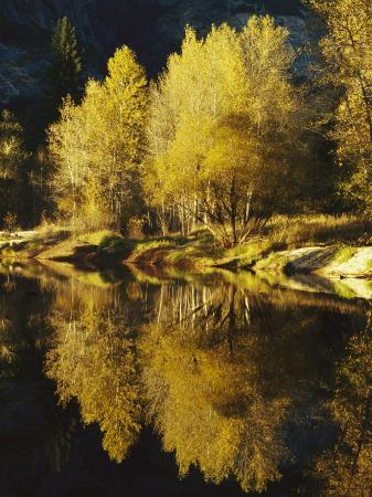 marc-moritsch-autumn-trees-reflected-in-the-merced-river