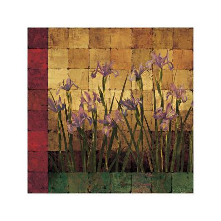 marcia-wells-iris-garden
