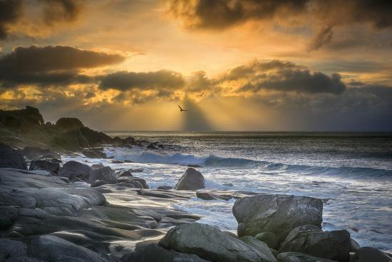 marco-carmassi-lofoten-beach-and-stones