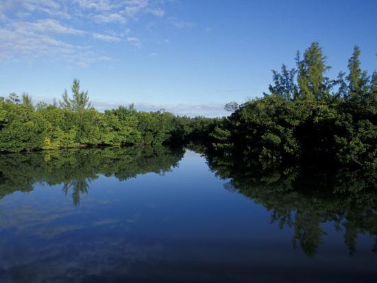 maresa-pryor-tidal-lagoons-fringed-with-mangroves-lovers-key-sra-ft-meyer-s-beach-florida