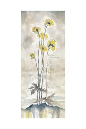 margaret-ferry-yellow-blossoms-i