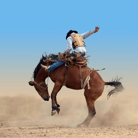 margo-harrison-bucking-rodeo-horse-isolated-with-clipping-path