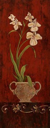 maria-donovan-orchid-allure-i