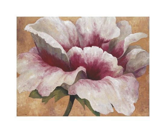maria-torrontegui-pink-begonia