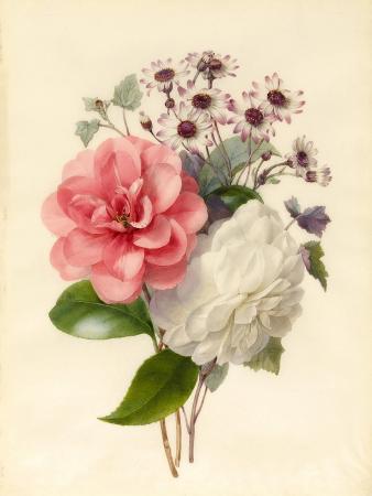 marie-anne-spray-of-three-flowers