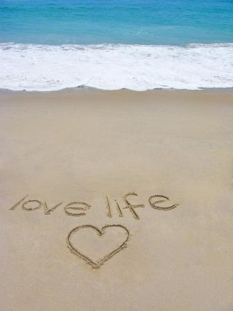 marie-hickman-beach-on-fire-island-ny-with-the-words-love-life-written-in-the-sand