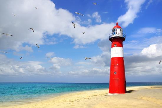 marina-ignatova-lighthouse-with-flying-seagulls-westkapelle