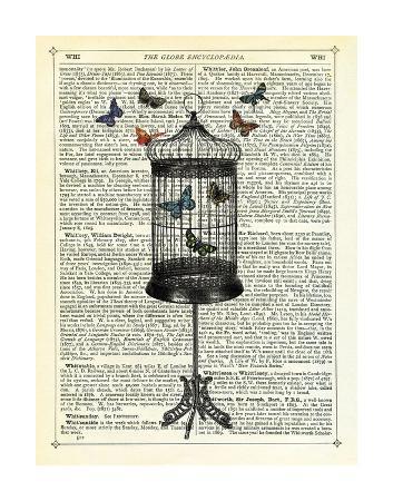 marion-mcconaghie-bird-cage-butterflies