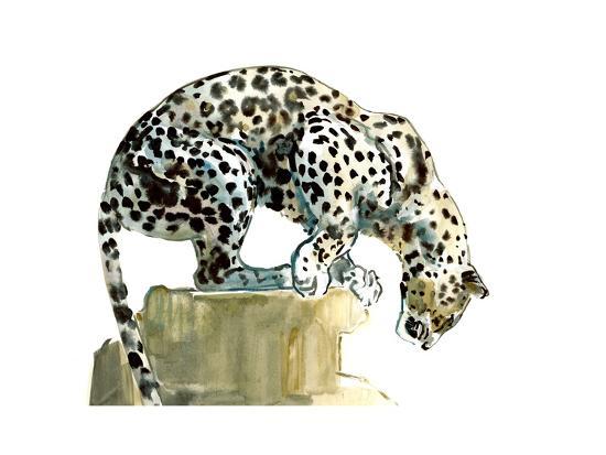 mark-adlington-spine-arabian-leopard-2015