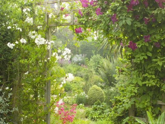 mark-bolton-view-through-trellis-arch-of-clematis-etoil-violette-into-garden
