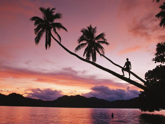 mark-cosslett-man-palm-trees-and-bather-silhouetted-at-sunrise