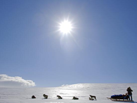 mark-hannaford-troms-lyngen-alps-travel-over-the-mountains-of-the-lyngen-alps-via-dog-sled-norway