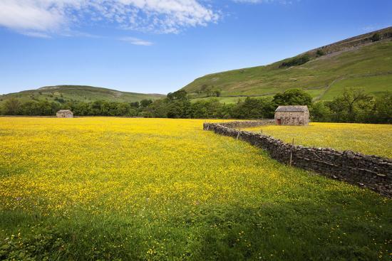 mark-sunderland-field-barns-and-buttercup-meadows-at-muker