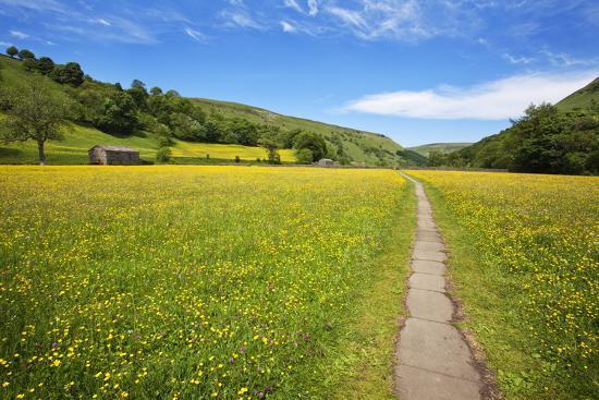 mark-sunderland-paved-footpath-across-buttercup-meadows-at-muker
