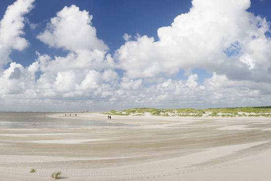 markus-lange-dunes-at-a-beach-sankt-peter-ording-eiderstedt-peninsula-schleswig-holstein-germany-europe