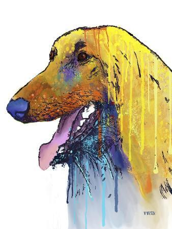 marlene-watson-afghan-hound-2