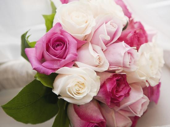 marnie-burkhart-bouquet-of-roses