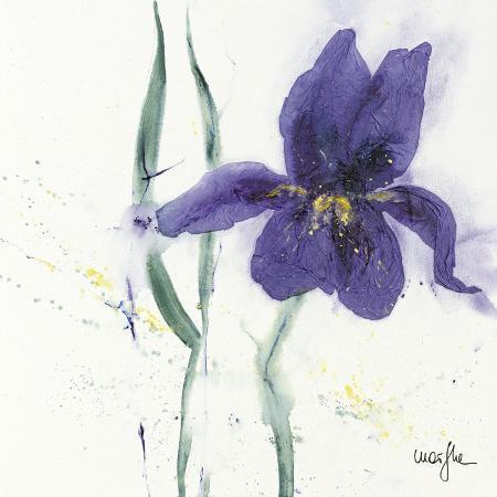 marthe-iris-ii