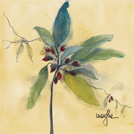 marthe-olivier-v