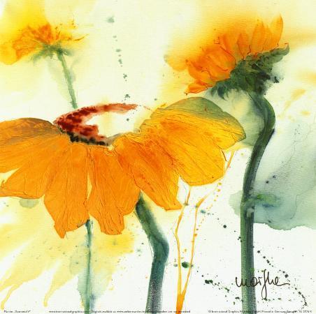 marthe-sunflower-v
