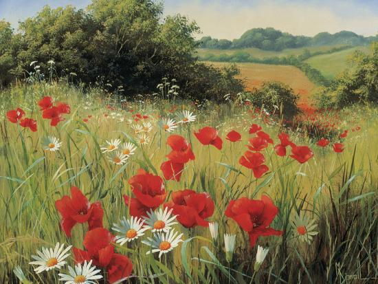 mary-dipnall-sunlit-meadow