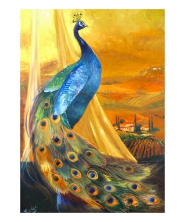 mary-rucker-tuscan-peacock