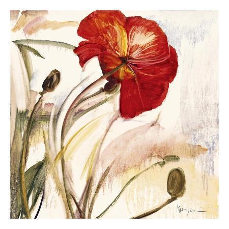marysia-crimson-poppy-i