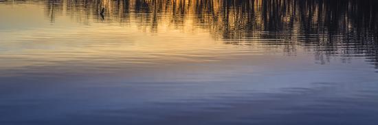 matias-jason-reflection-on-lake