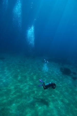 matthew-oldfield-scuba-diving