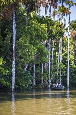 matthew-williams-ellis-canoe-boat-trip-on-sandoval-lake-tambopata-national-reserve-amazon-jungle-of-peru-peru