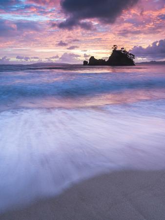 matthew-williams-ellis-pungapunga-island-at-whangapoua-beach-at-sunrise-coromandel-peninsula-north-island-new-zealand