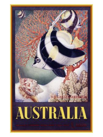 mayo-australia-great-barrier-reef