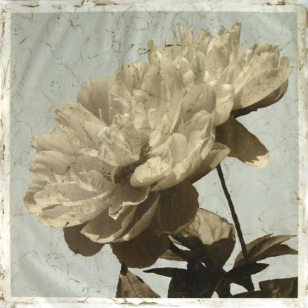 megan-meagher-antiqued-floral-and-sky-i