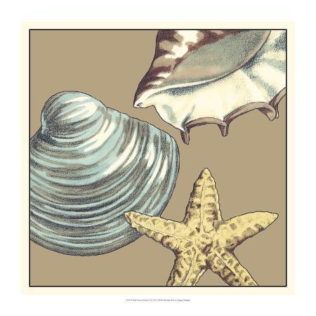 megan-meagher-shell-trio-on-khaki-iv