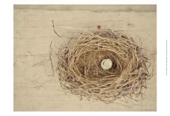 meghan-mcsweeney-nesting-iii
