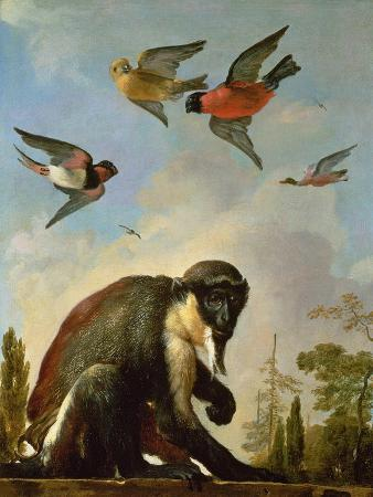 melchior-de-hondecoeter-chained-monkey-in-a-landscape