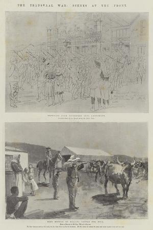 melton-prior-the-transvaal-war-scenes-at-the-front